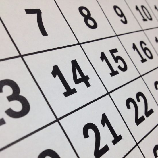 white grid with black numbers typical of a calendar